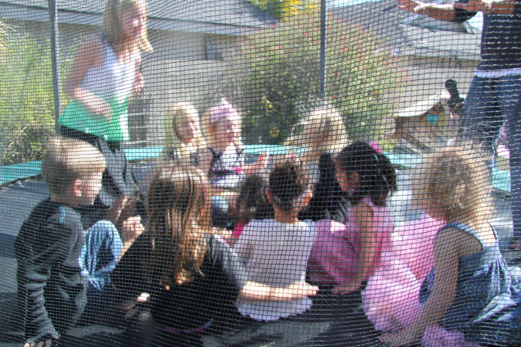 Well behaved children in a trampoline